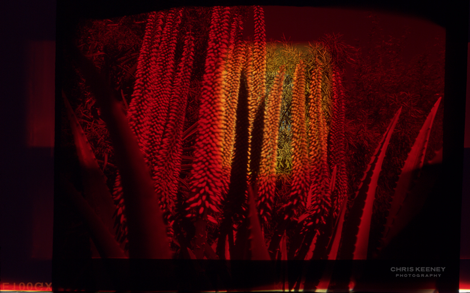 experimental pinhole photography chris keeney