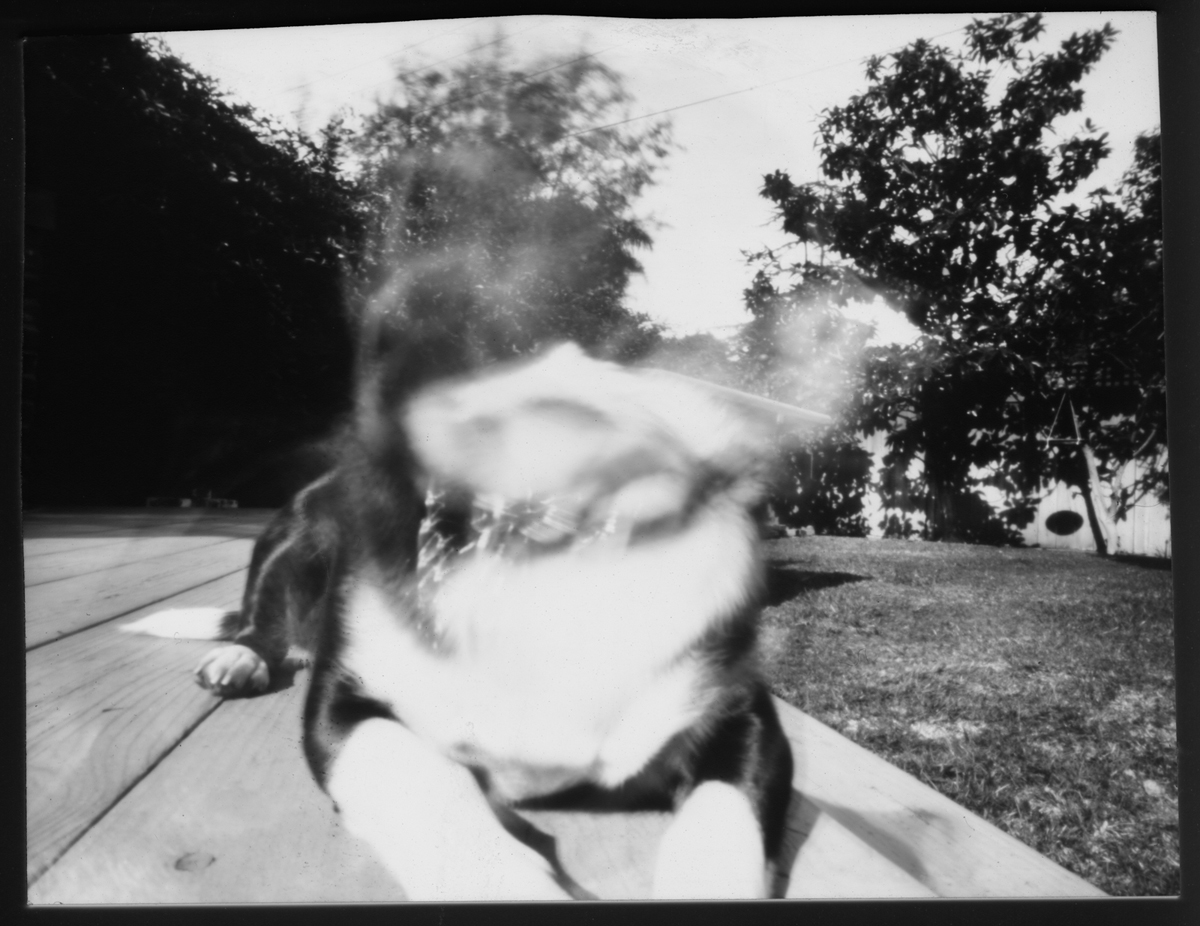 Chris Keeney Announces New Pinhole Lensless Photography Website And Blog