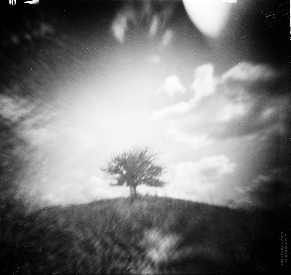 one tree hill pinhole photography1